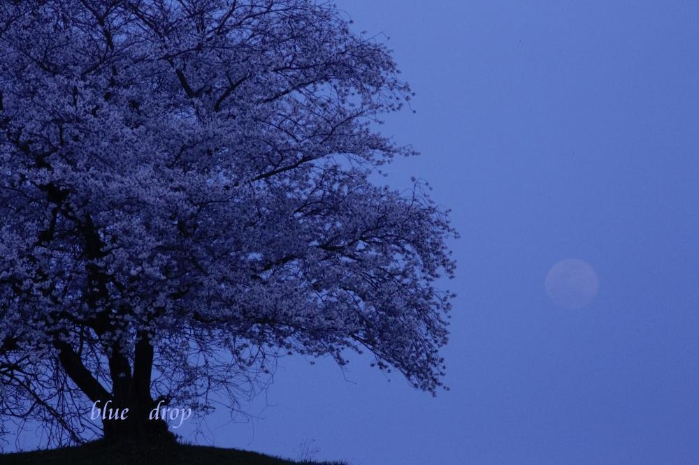 月が昇る時
