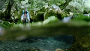 宇多田ヒカル サントリー天然水」新TV-CM『水の山行ってきた 奥大山』篇0019
