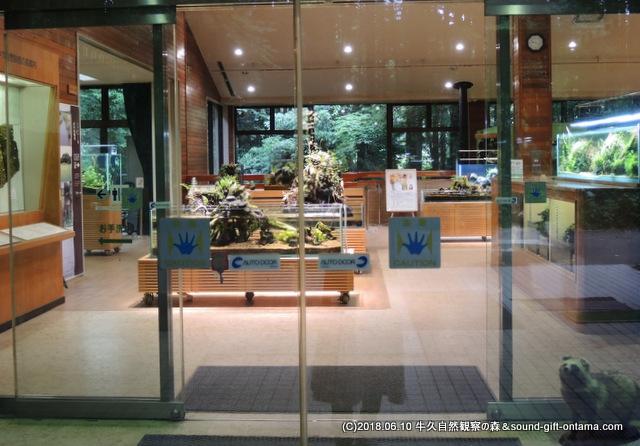 牛久自然観察の森ネイチャーセンター入口