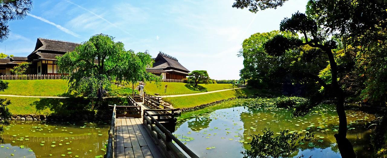 20180512 後楽園今日の園内花葉の池の初夏の様子ワイド風景 (1)