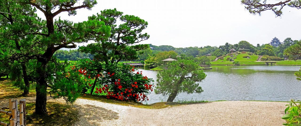 20180626 後楽園今日の園内観光定番位置から眺めたノウゼンカズラの花ワイド風景 (1)
