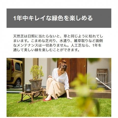 don2_wt003-1_2.jpg
