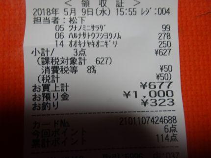 mini_DSC07286.jpg
