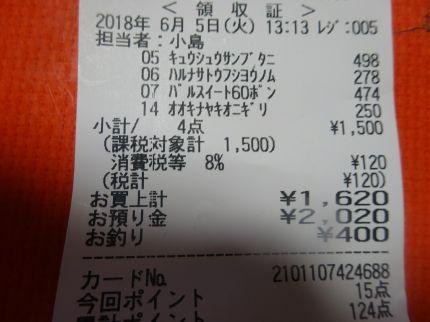 mini_DSC07840.jpg