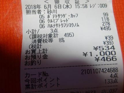mini_DSC07869.jpg