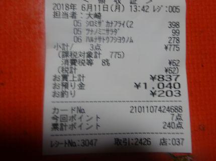 mini_DSC07924.jpg