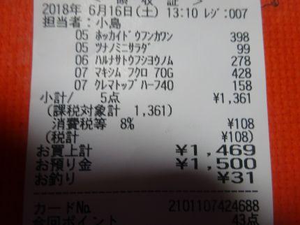mini_DSC08037.jpg