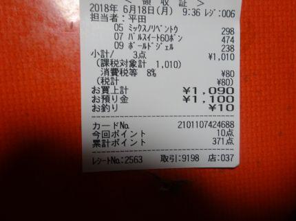 mini_DSC08043.jpg