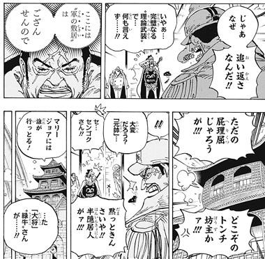ワンピース905話ネタバレ感想(8) サカズキ