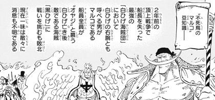 ワンピース909話ネタバレ感想(12) 白ヒゲ海賊団