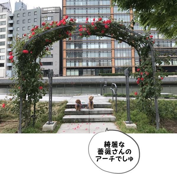 IMG_8670.jpg