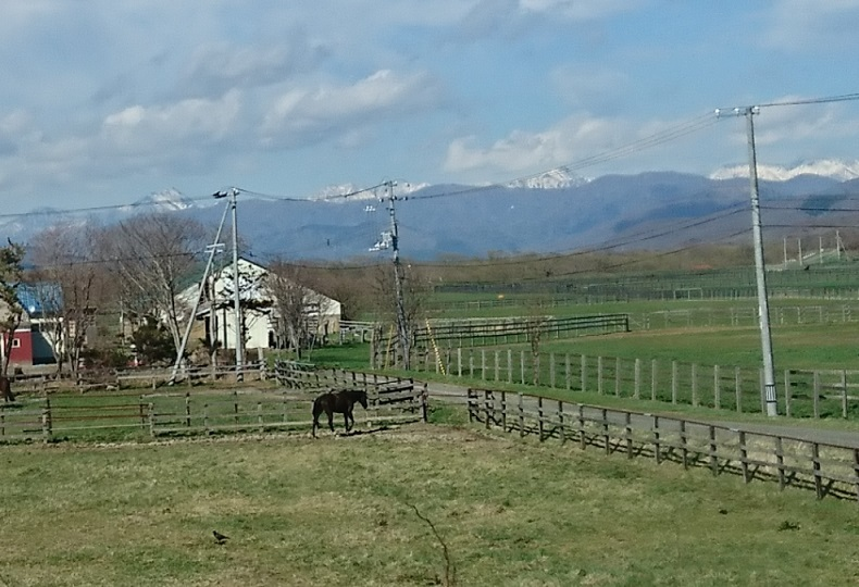 20180426日高山脈と馬