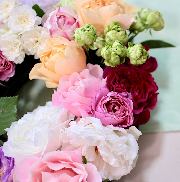 2018-0509-roses05.jpg