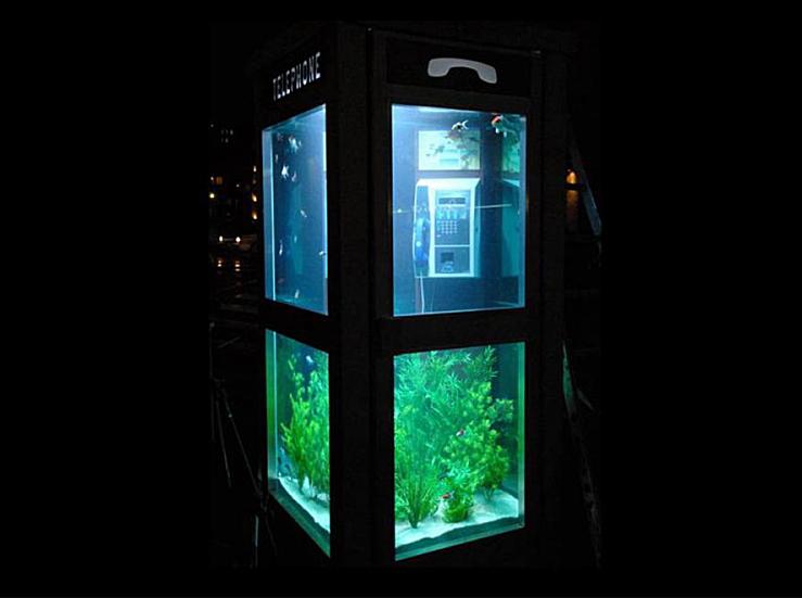 phone-booth-fish-tank_1.jpg