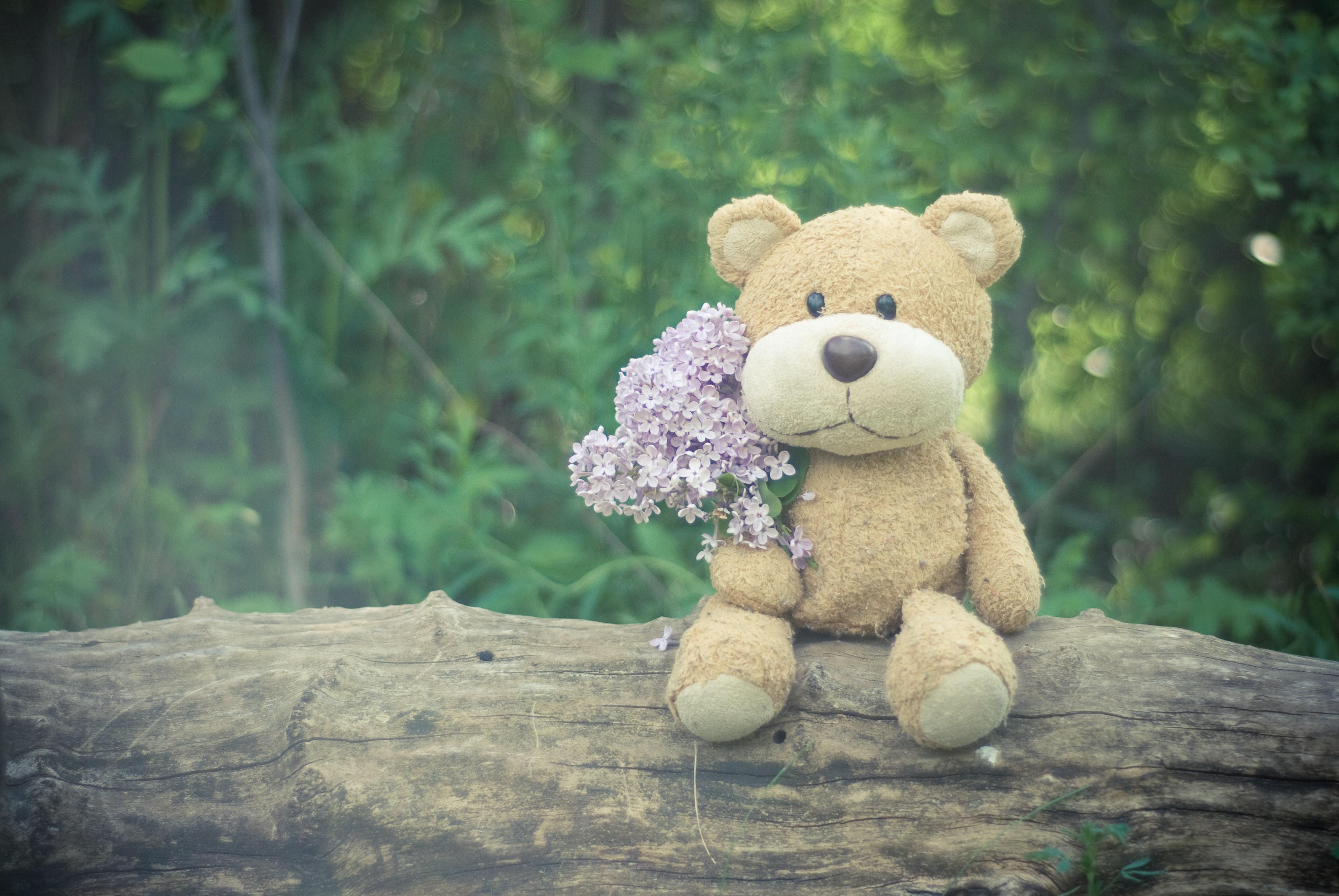 bloom-blossom-flora-105530.jpg