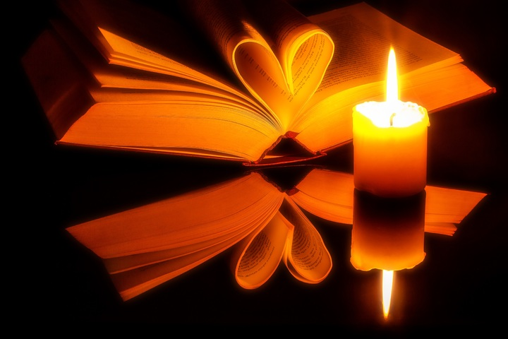 book-novel-open-light-sunlight-flower-1203221-pxhere-com.jpg