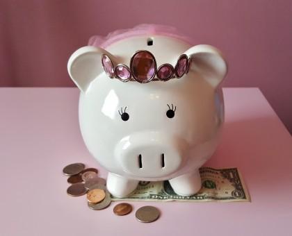piggy_bank_pig_piggy_pink_savings_save_money_coins-607792.jpg