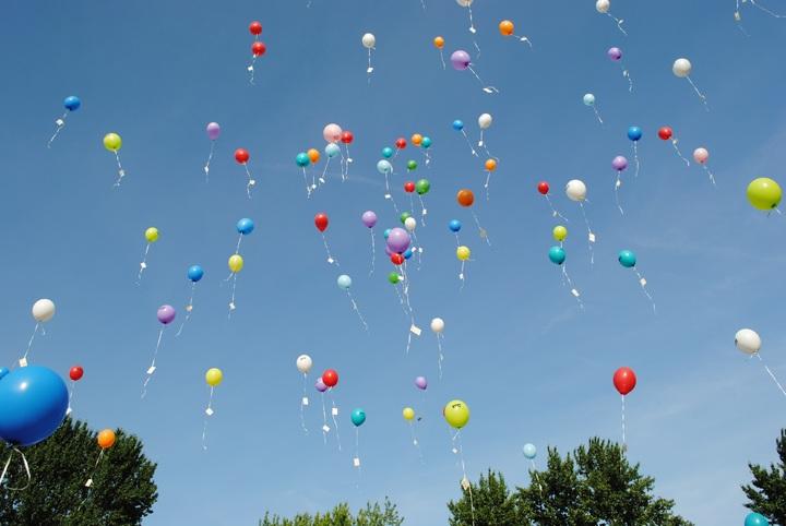 sky-balloon-hot-air-balloon-fly-celebration-vehicle-1061709-pxhere-com.jpg