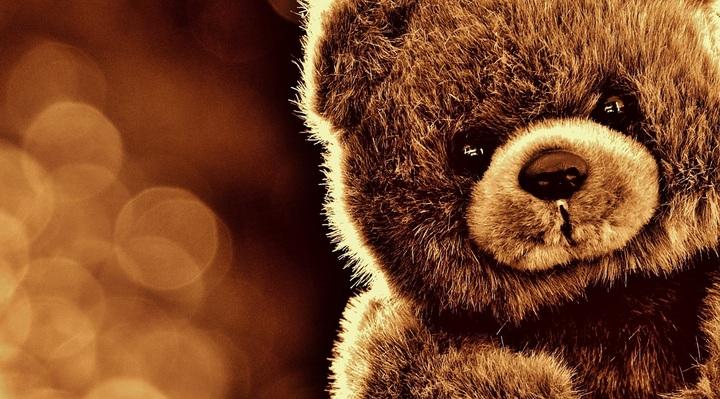 sweet-animal-cute-bear-mammal-toy-1271549-pxhere-com.jpg