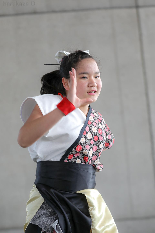 yumezakura20180429rgm-62.jpg