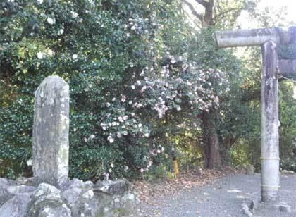 20171205_futamatajyouato009.jpg