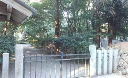 20171209_iinoyaguu_009.jpg