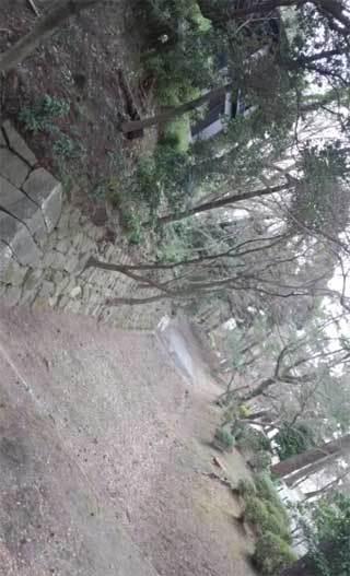 20180214_okazakijyou_008.jpg