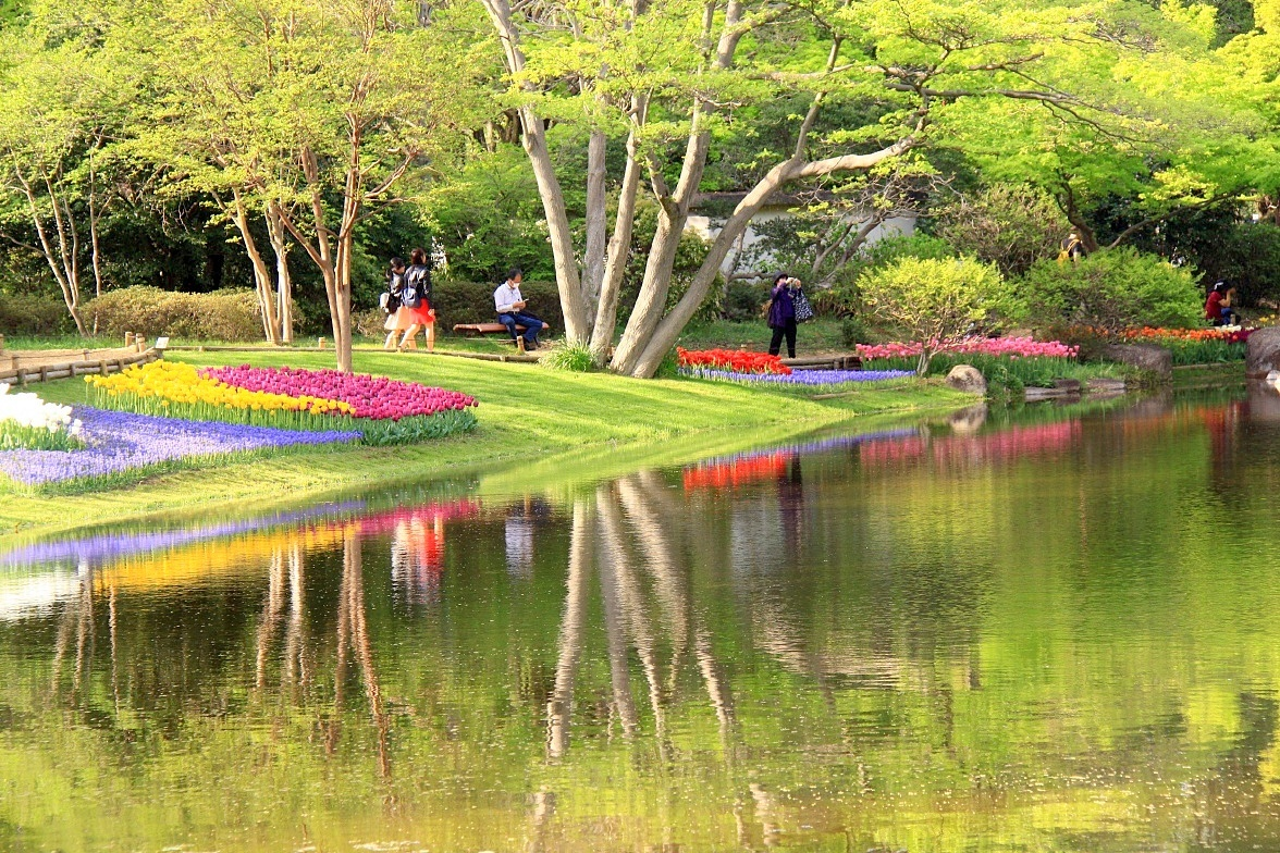 IMG_b5441緑の風景○