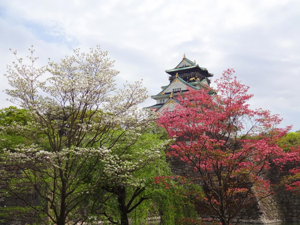 大阪城DSC00932