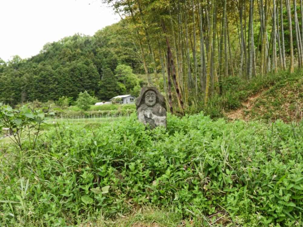 清澄DSCN8679