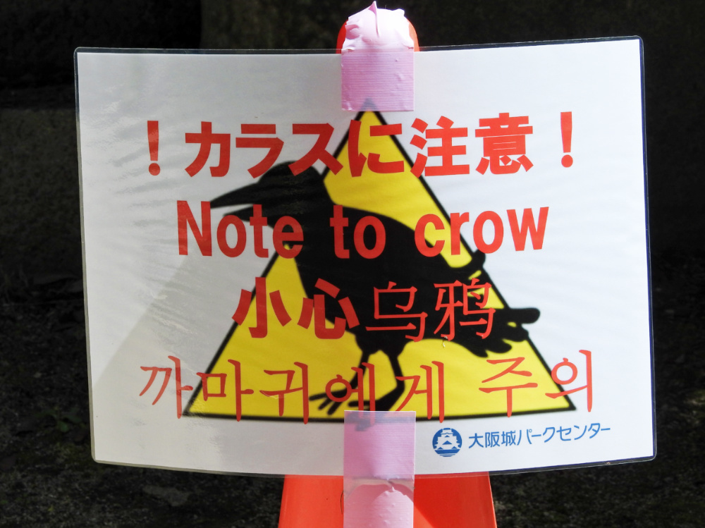 大阪城DSCN8117