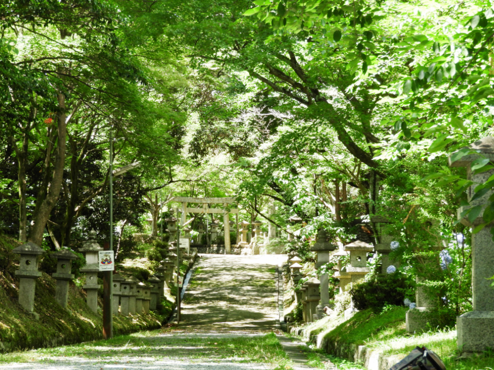八坂神社DSCN9810