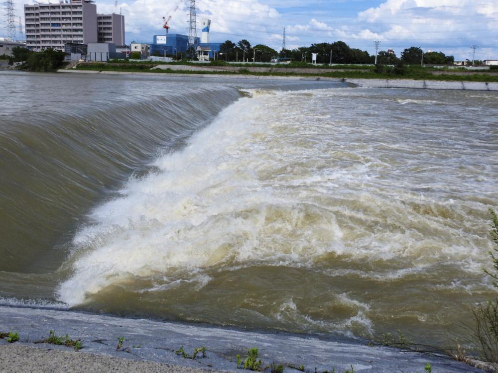 武庫川DSCN0374
