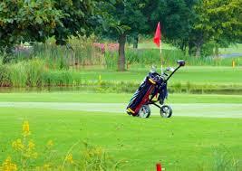 ゴルフ 手引きカート