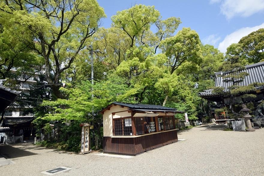 杭全神社・春 (2)