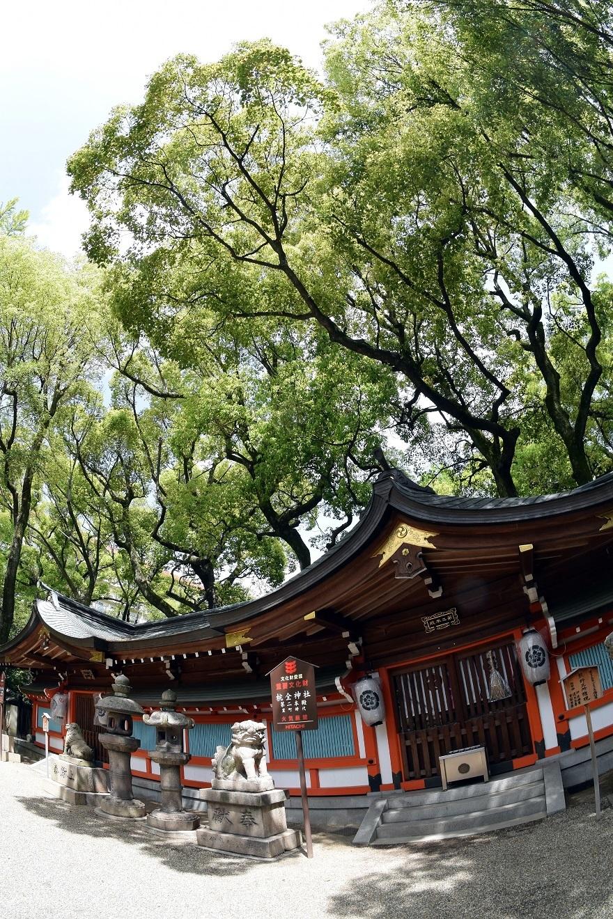 杭全神社・春 (011)
