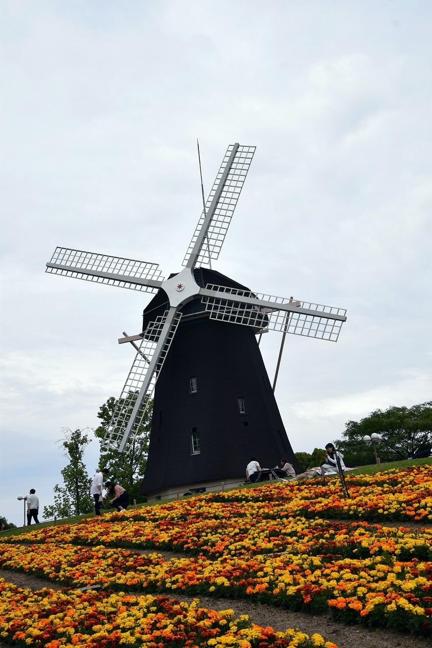 鶴見の風車の丘 (2)