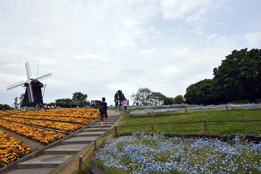 鶴見の風車の丘 (4)