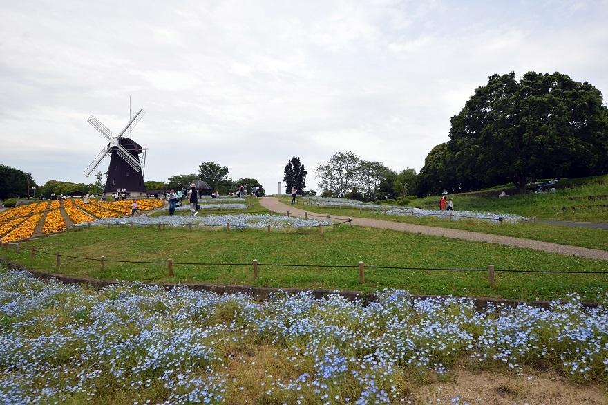 鶴見の風車の丘 (5)