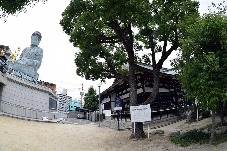 兵庫大仏 (5)