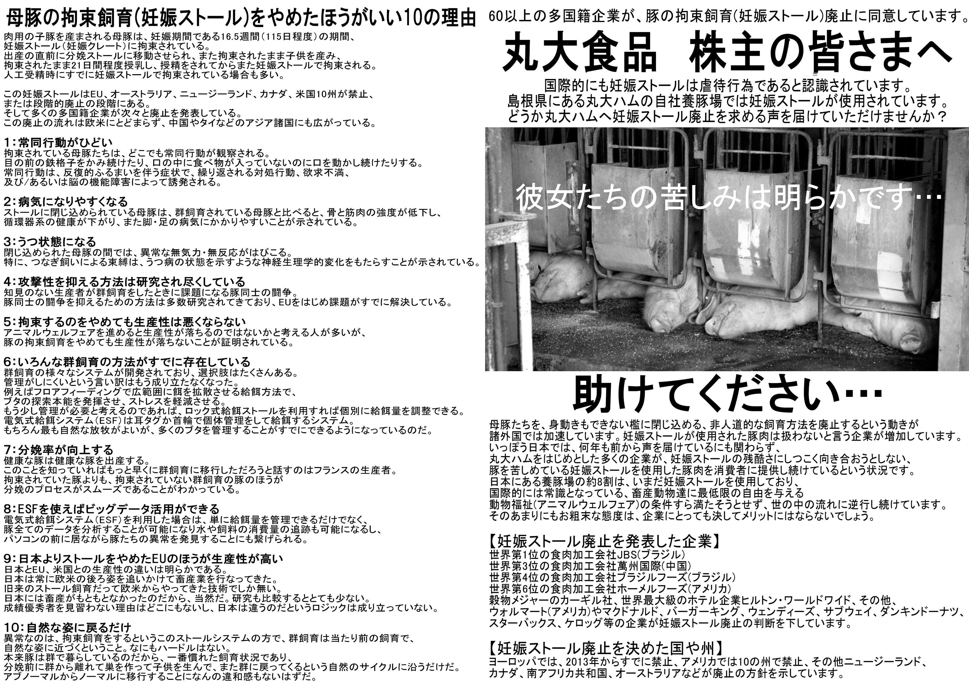 butaorichirashi5.jpg