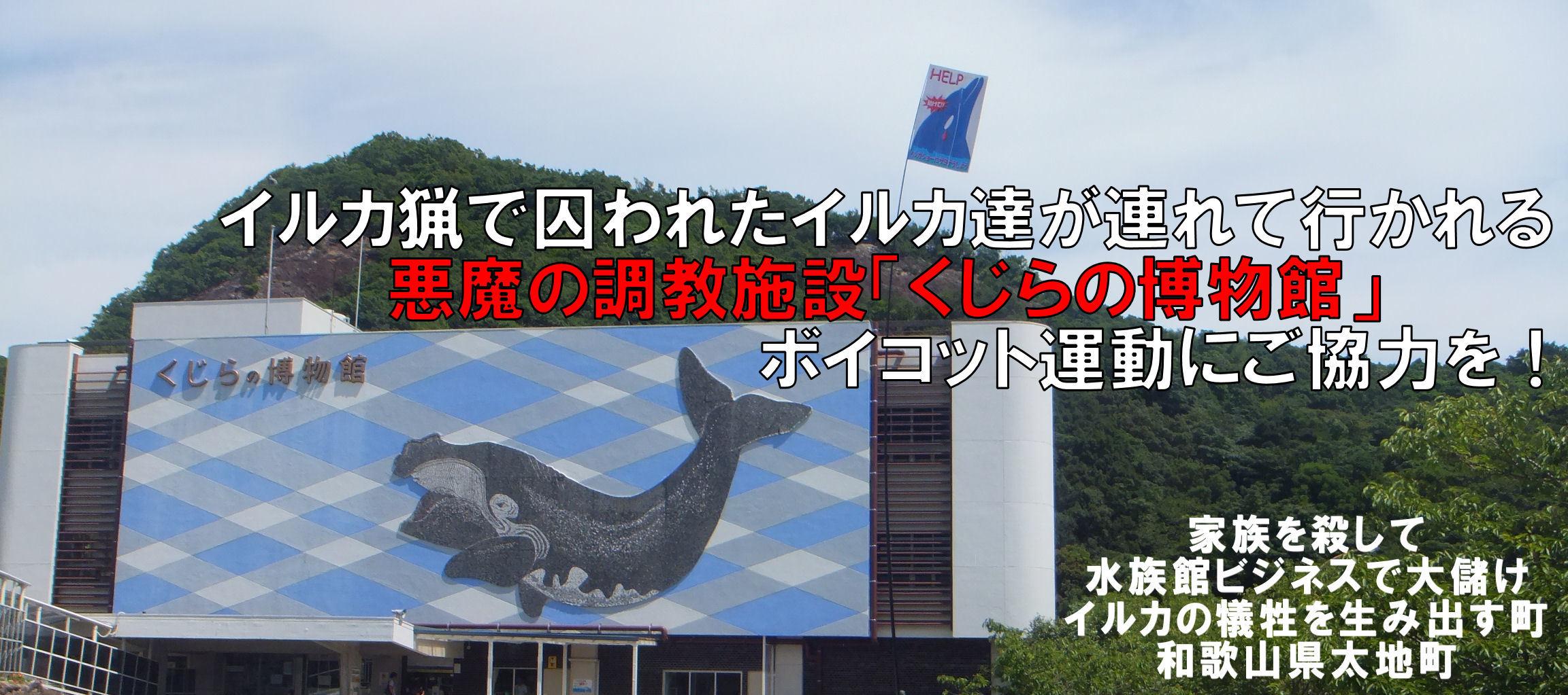kujirahakubutukan1_20180709212714332.jpg