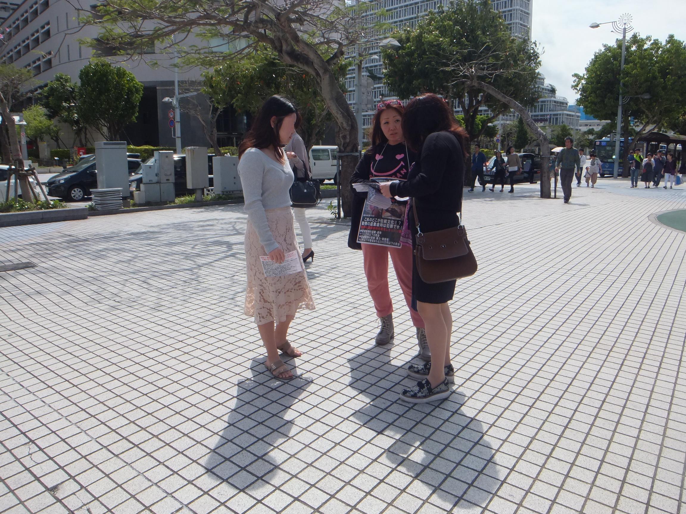 okinawaar48.jpg