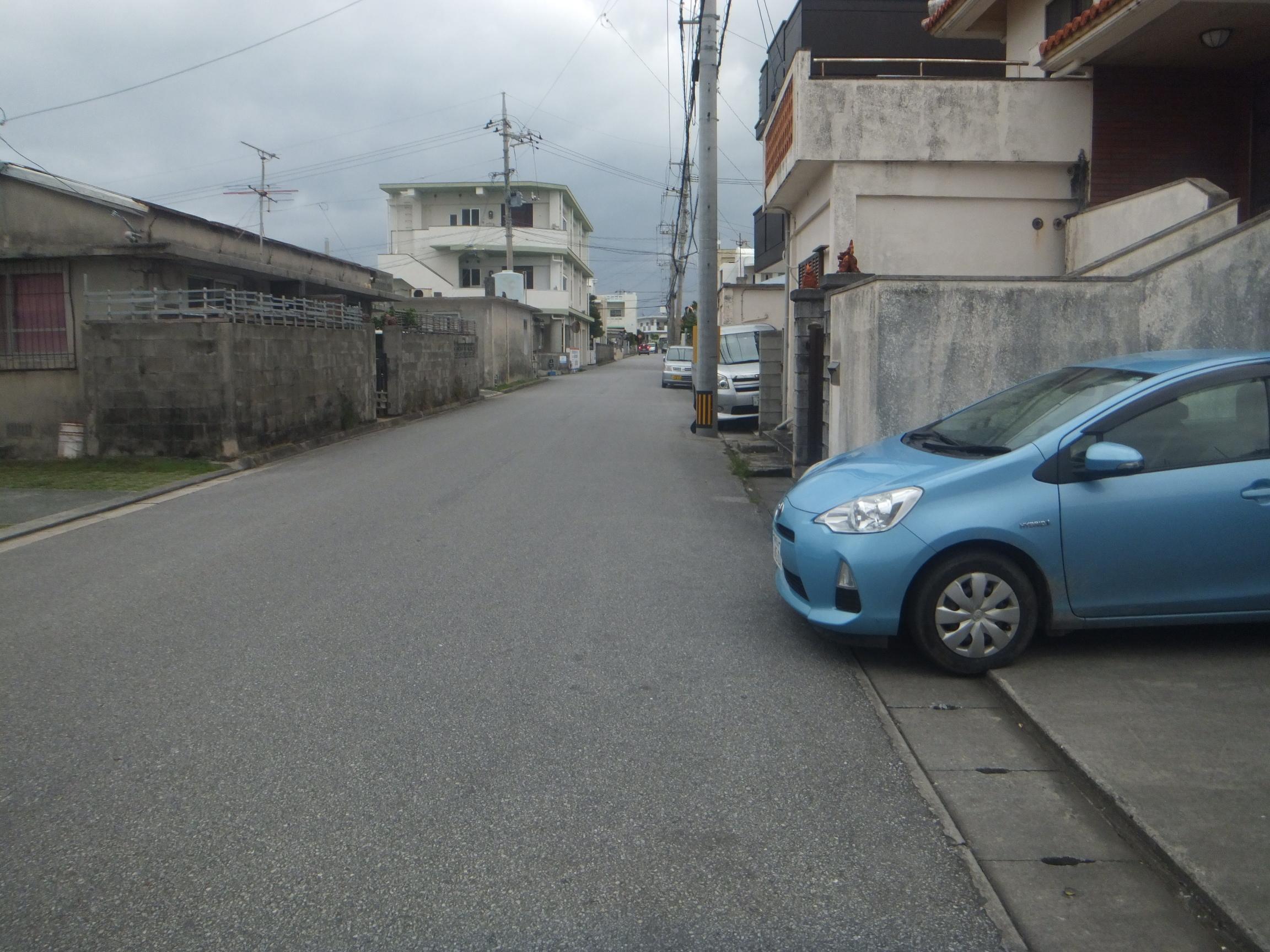okinawagub1.jpg