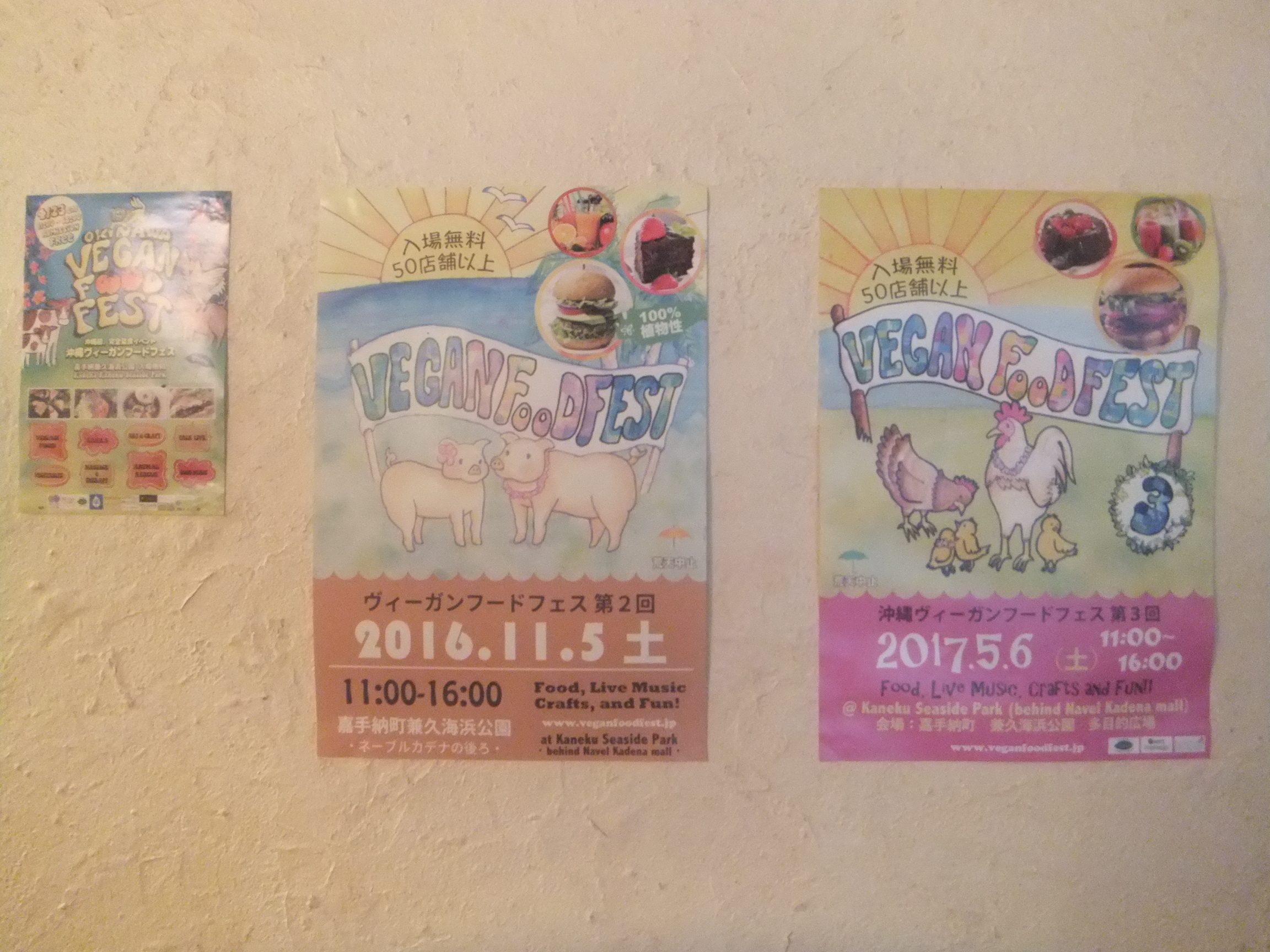 okinawagub7.jpg