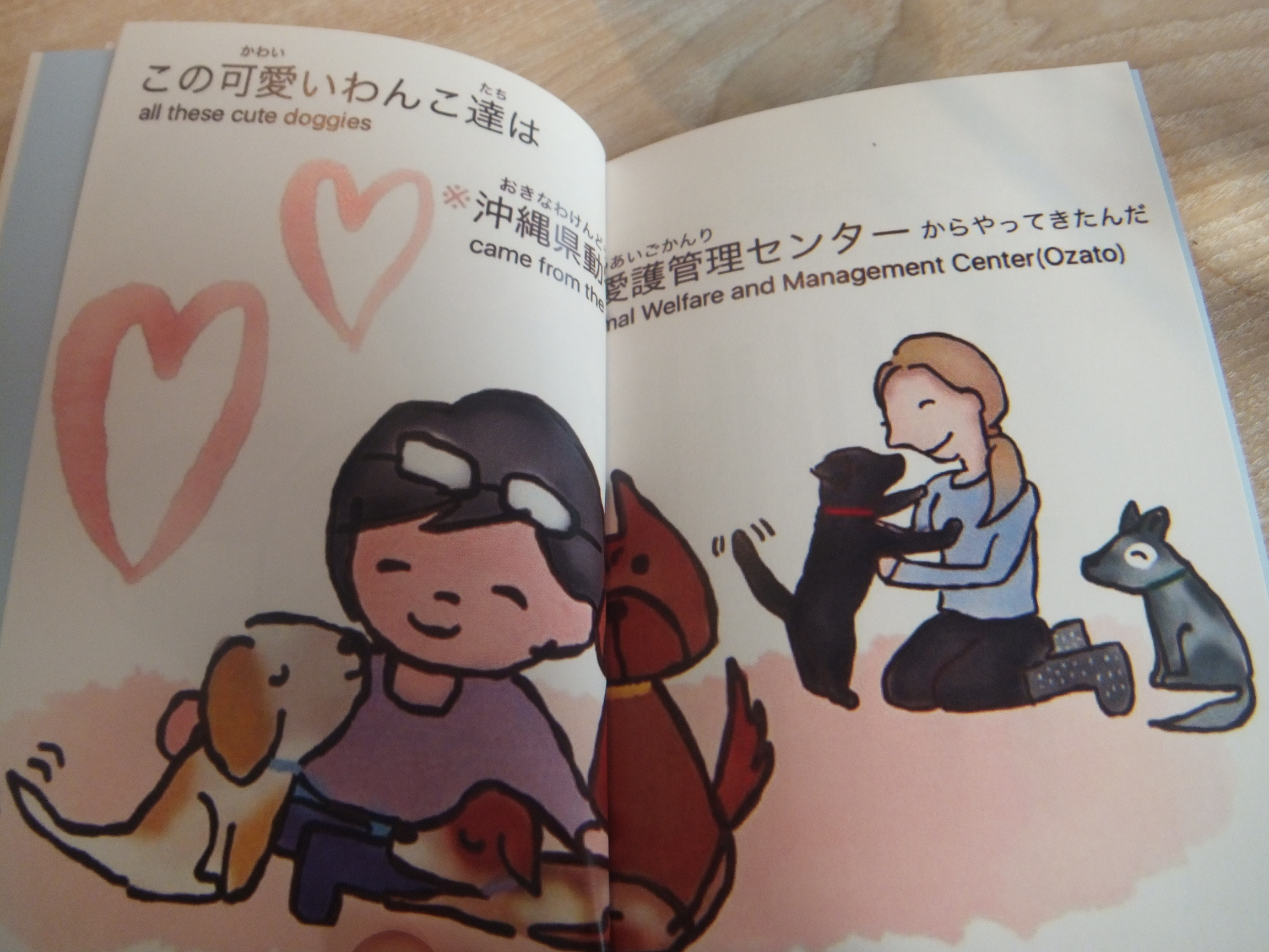 okinawapl11.jpg