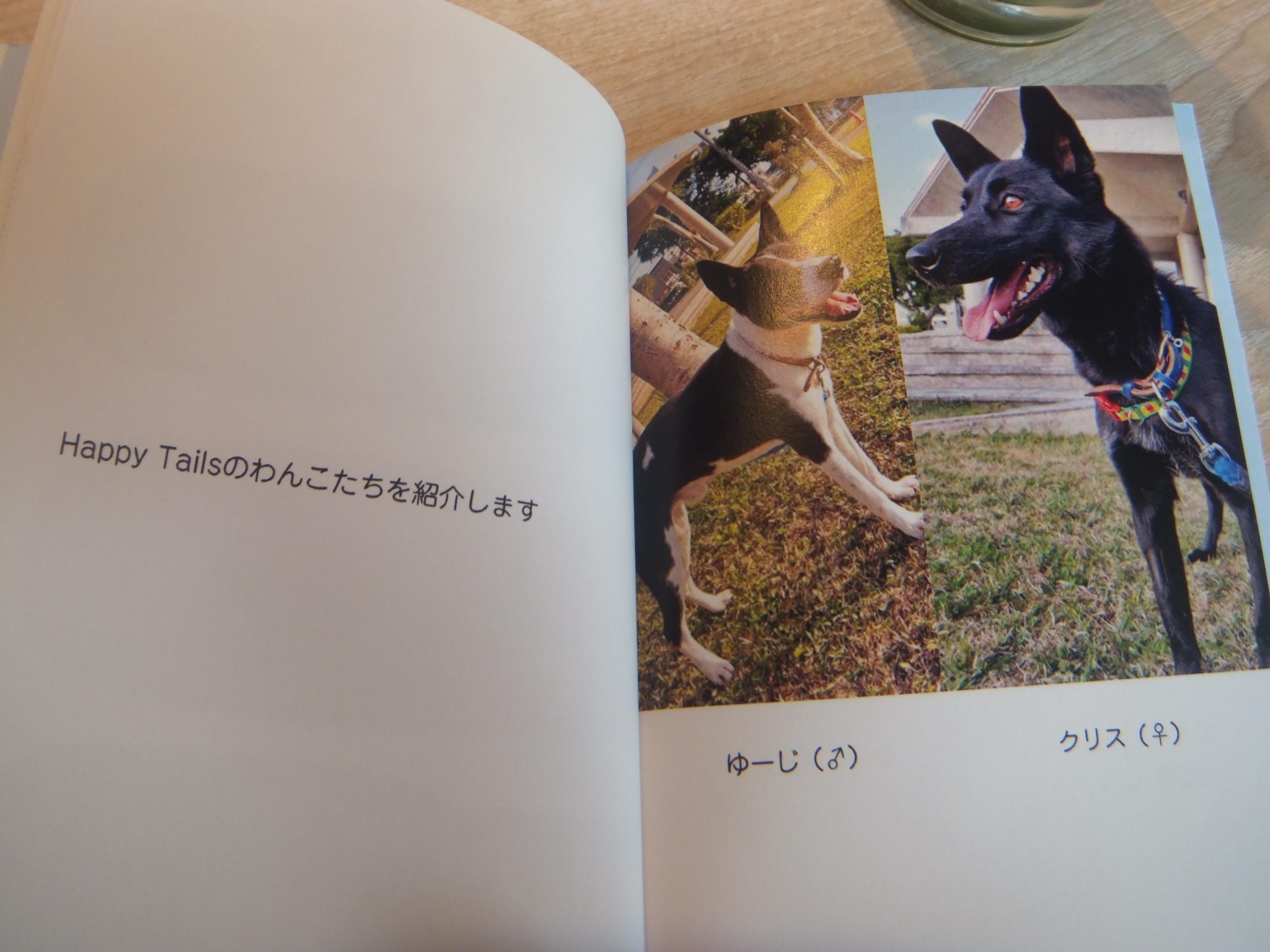 okinawapl16.jpg