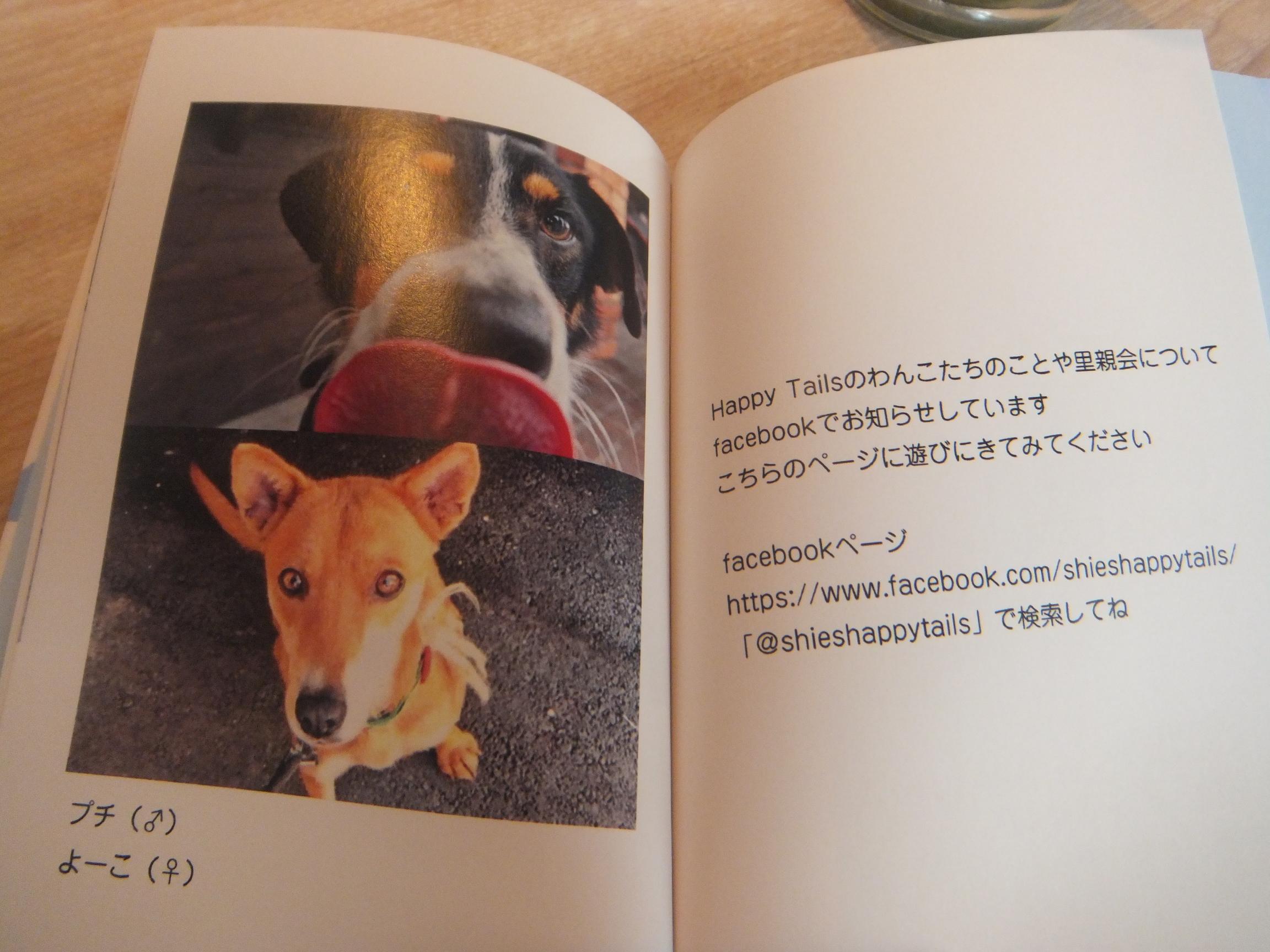 okinawapl18.jpg