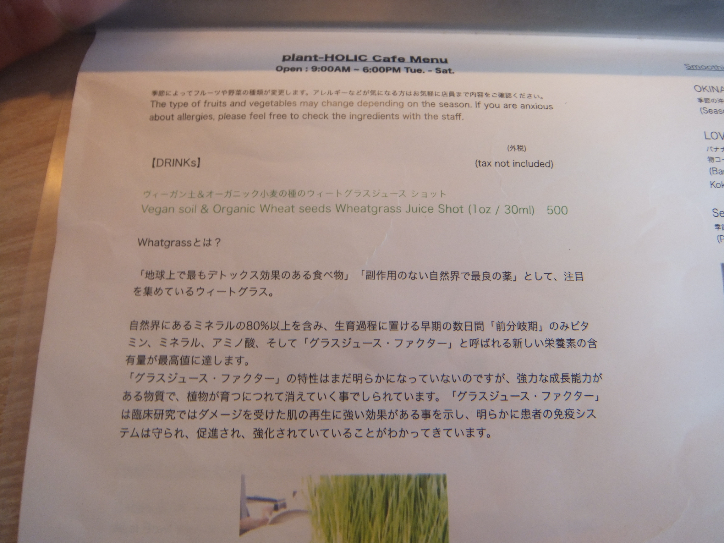 okinawapl4.jpg