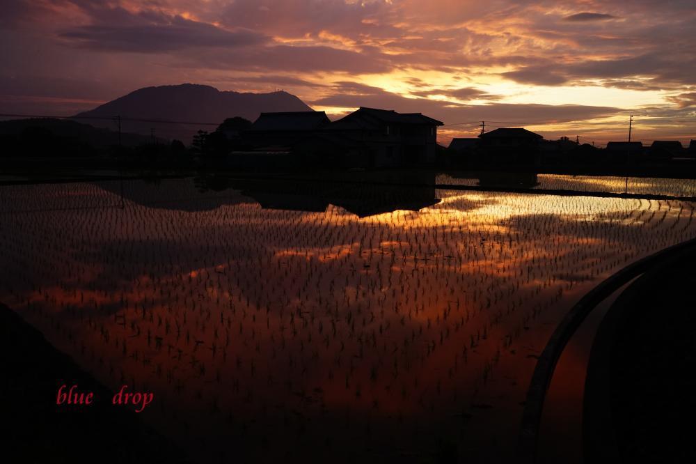 水に映える夕焼け*